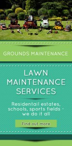 Lawn-Maintenance-Services