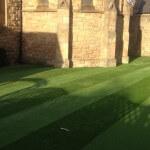 lazylawn-artificial lawn-2.JPG
