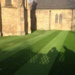 lazylawn-artificial lawn-5