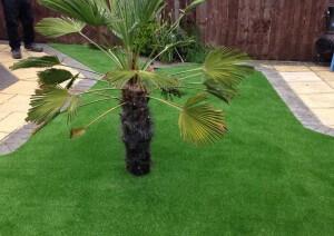 artificial-lawn-installation-sunderland