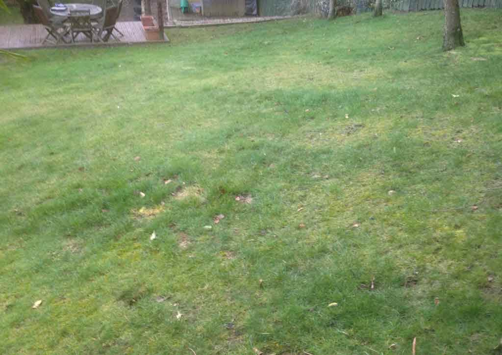 before-artificial-lawn-rowlands-gill