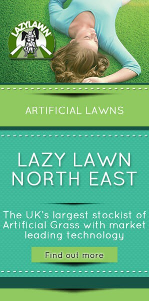 Lazy-Lawn-North-East