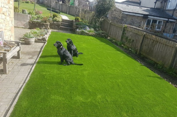 Artificial Turf Sunderland