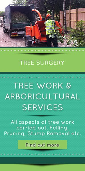 Tree-Surgery-North-East