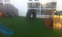 artificial-grass-newcastle-2