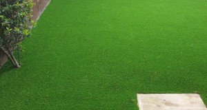 LazyLawn Artificial Grass Newcastle